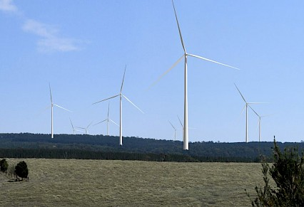 Wind farm consultations