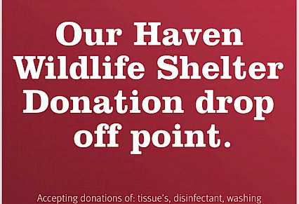 Our Haven Wildlife Shelter